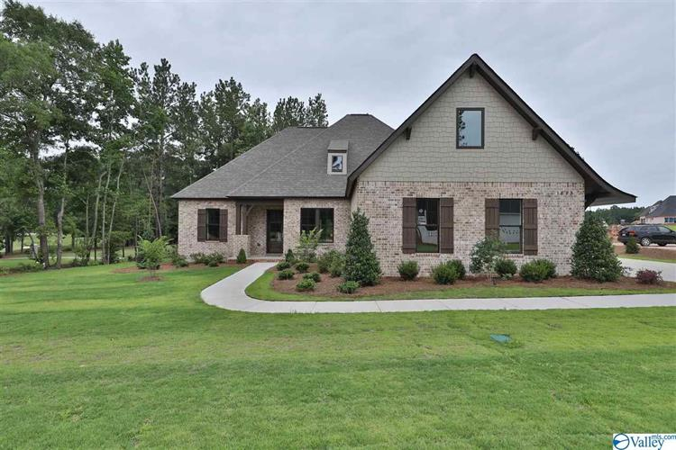 20 TURNING LEAF DRIVE, Union Grove, AL 35175 - Image 1