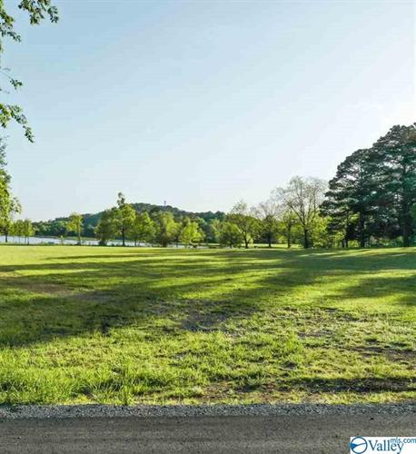 lot 8 LAKELANDS COVE ROAD, Guntersville, AL 35976 - Image 1