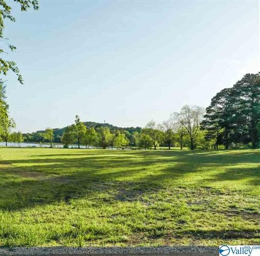 Lot 4 LAKELANDS COVE ROAD, Guntersville, AL 35976 - Image 1