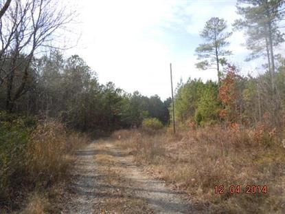 Lindsey Street  Rainbow City, AL MLS# 1008524