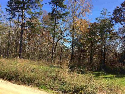 100 COUNTY ROAD 861 Gaylesville, AL MLS# 1082245