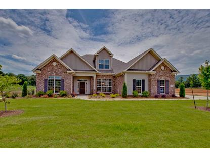 6009 PEACH POND WAY Owens Cross Roads, AL MLS# 1086165
