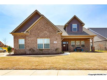 28 TUBMAN DRIVE, Madison, AL
