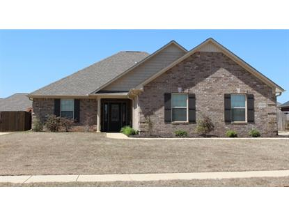 13203 HIDDEN VALLEY DRIVE, Madison, AL