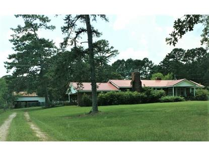 1124 CAIN ROAD, Somerville, AL
