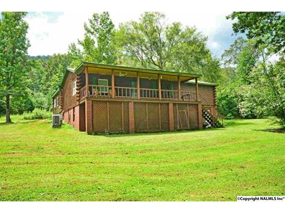 567 PINES CHURCH ROAD Somerville, AL MLS# 1106547