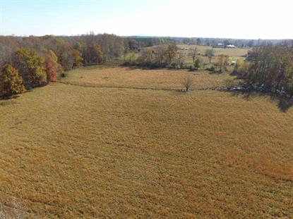 0 READY SECTION ROAD Hazel Green, AL MLS# 1106665