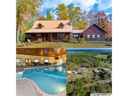 553 OLD SIX MILE ROAD Somerville, AL MLS# 1108073
