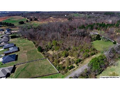 0 BURWELL ROAD Harvest, AL MLS# 1108908