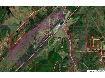 SAND VALLEY ROAD NW Fort Payne, AL MLS# 1109516