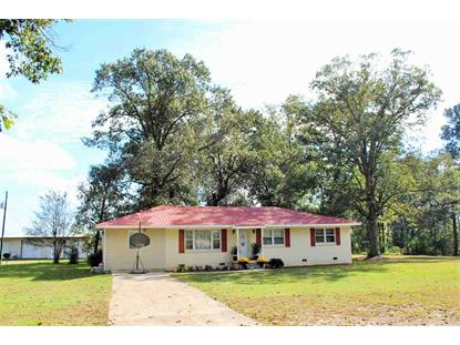 1346 COUNTY ROAD 883 Fyffe, AL MLS# 1110253