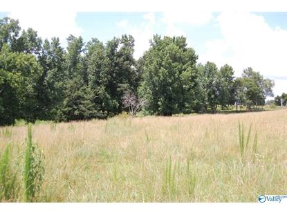 522 SMITH VASSER ROAD Harvest, AL MLS# 1115725
