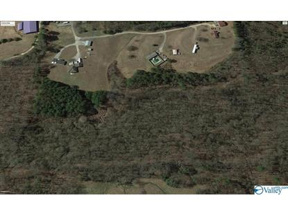 TURTLE CREEK ROAD Somerville, AL MLS# 1116356