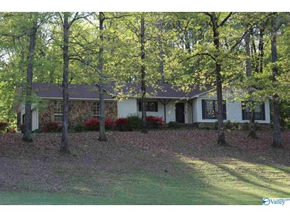 464 STILL MEADOW ROAD Somerville, AL MLS# 1116576