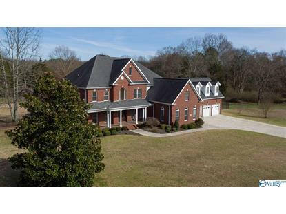15350 PEPPER CREEK ROAD Harvest, AL MLS# 1116676