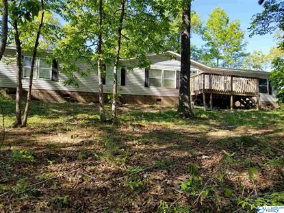 105 HUCKLEBERRY CIRCLE Odenville, AL MLS# 1116746
