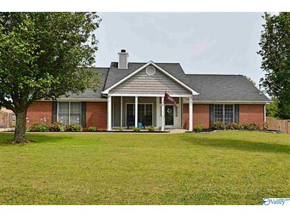 155 WORD LANE Harvest, AL MLS# 1117169