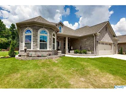 225 NARROW CREEK DRIVE Harvest, AL MLS# 1117660