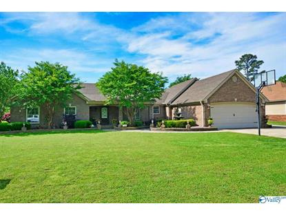 98 MOUNTAIN HOME ROAD Trinity, AL MLS# 1117878