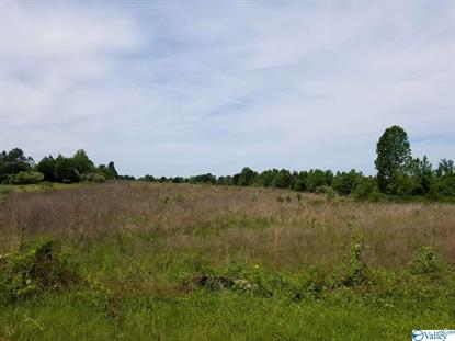 0 OLD RAILROAD BED ROAD Harvest, AL MLS# 1118573