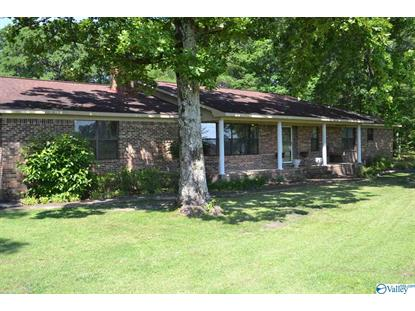 1262 TURNPIKE ROAD Albertville, AL MLS# 1119200
