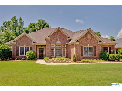 320 BLUE CREEK DRIVE Harvest, AL MLS# 1119496
