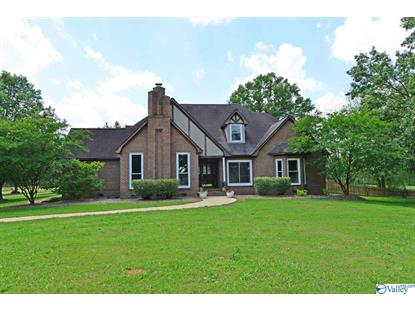 1656 IRON MAN ROAD Hartselle, AL MLS# 1119504