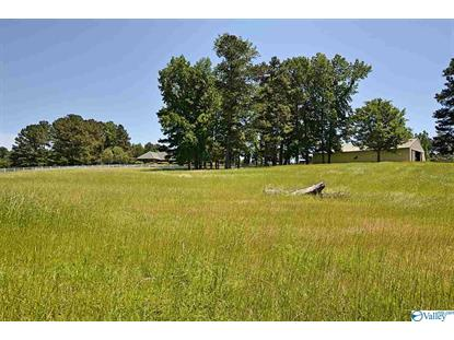 85 MIDWAY ROAD Union Grove, AL MLS# 1120056