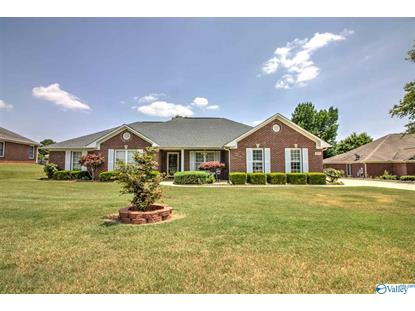 205 VINE CLIFF DRIVE Harvest, AL MLS# 1120532