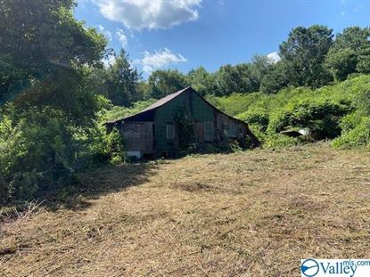 OLD SIBERT MILL ROAD Glencoe, AL MLS# 1125691