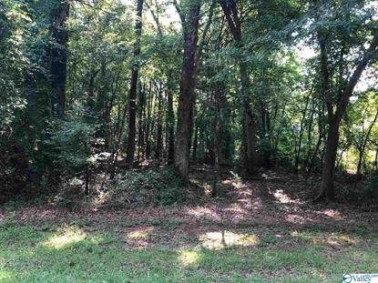 0 LITTLE BURWELL ROAD Harvest, AL MLS# 1125808