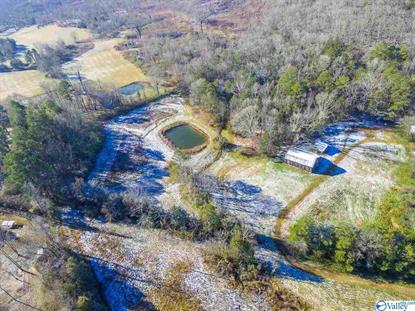 1 HWY 67  Somerville, AL MLS# 1133511