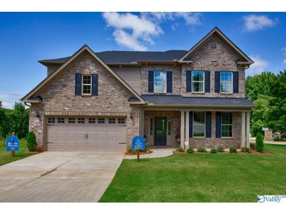 14229 WATER STREAM DRIVE Harvest, AL MLS# 1133784