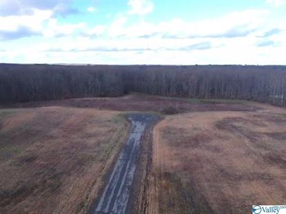 000000000 COUNTY ROAD 743 Scottsboro, AL MLS# 1136974