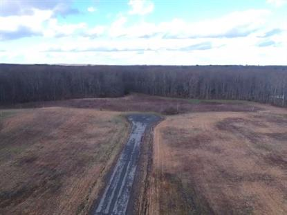 0000000000 COUNTY ROAD 743 Scottsboro, AL MLS# 1136975