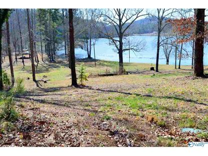 Lot 8 PARADISE RIDGE ROAD Leesburg, AL MLS# 1137121