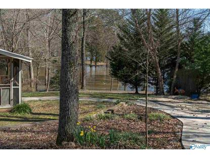 154 SCENIC DRIVE  Scottsboro, AL MLS# 1137182