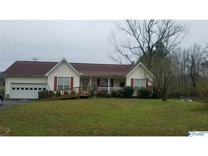 300 LAY AVENUE Glencoe, AL MLS# 1137605
