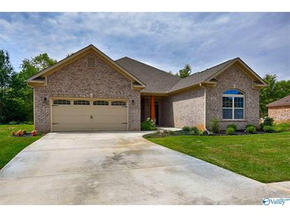 112 SUMMER WALK LANE Harvest, AL MLS# 1143891
