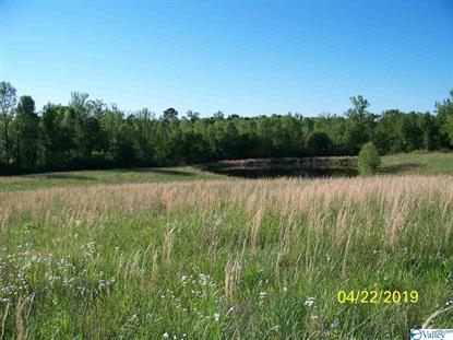 00 BRASHIERS CHAPEL ROAD Arab, AL MLS# 1145285