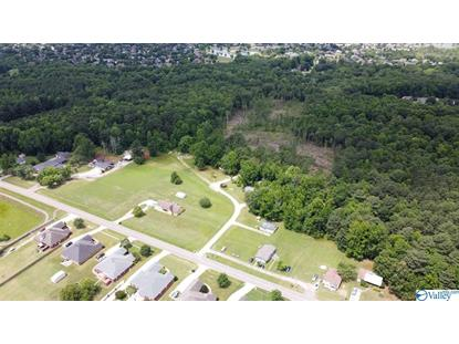 478 MOSE CHAPEL ROAD Madison, AL MLS# 1145452