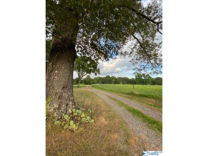 1264 MORROW MOUNTAIN ROAD Somerville, AL MLS# 1145744