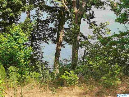 2249 LOOKOUT MOUNTAIN DRIVE Scottsboro, AL MLS# 1146252