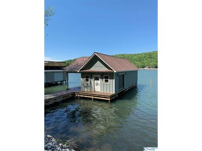 71 PINE ISLAND CIRCLE Scottsboro, AL MLS# 1146327