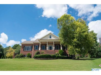 111 OVERVIEW DRIVE Madison, AL MLS# 1146966
