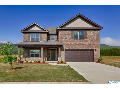 117 HOLLY FERN DRIVE Harvest, AL MLS# 1147379