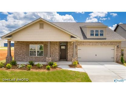 147 HOLLY FERN DRIVE Harvest, AL MLS# 1147383
