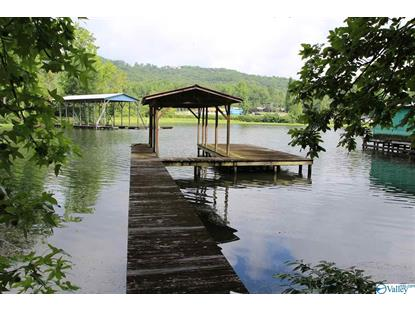 415 PINE ISLAND POINT Scottsboro, AL MLS# 1147804