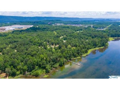 0 GOOSE POND ISLAND DRIVE Scottsboro, AL MLS# 1148079