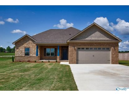 100 NICHOLAS VIEW LANE Hazel Green, AL MLS# 1148178